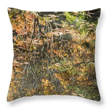 Reflecting Gold Throw Pillow