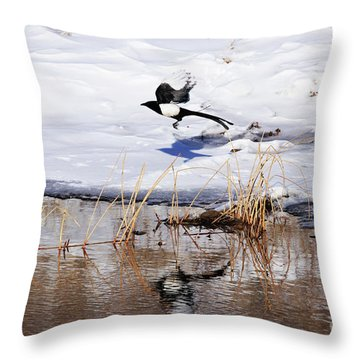 Reflecting Magpie Throw Pillow