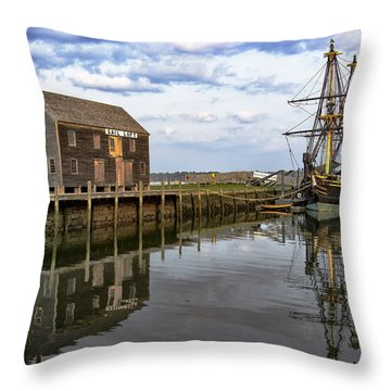 Reflecting Moment Throw Pillow
