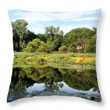 Throw Pillow featuring the photograph Reflecting On A Summer Morning by William Selander