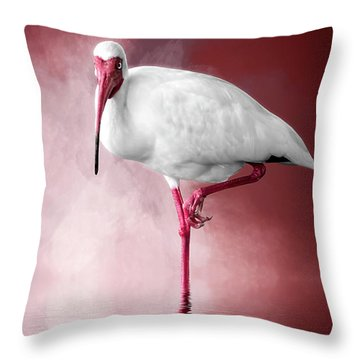 Reflecting On Life Throw Pillow