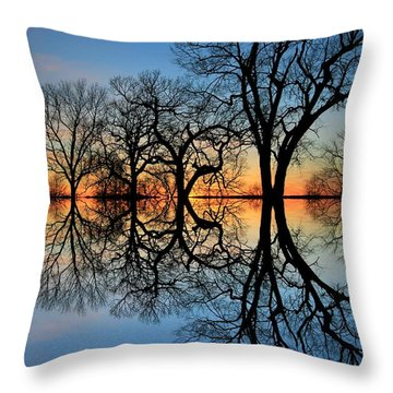 Throw Pillow featuring the photograph Reflecting On Tonight by Chris Berry