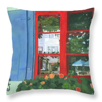 Reflecting Panes Throw Pillow by Lynne Reichhart