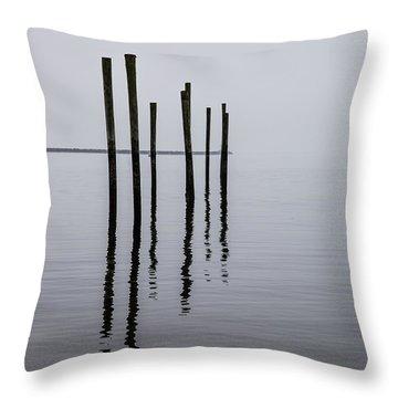 Reflecting Poles Throw Pillow