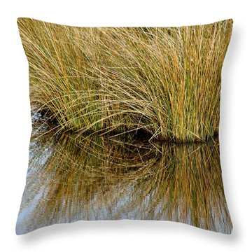 Reflecting Reeds Throw Pillow by Marty Koch