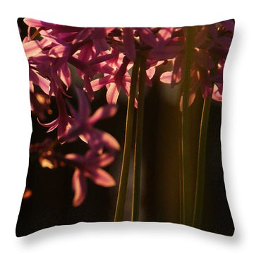 Reflecting The Day Throw Pillow