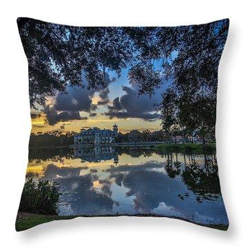 Reflection 6 Throw Pillow by Mina Isaac