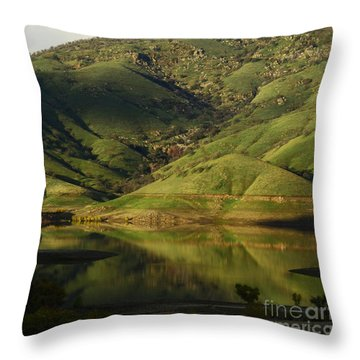 Reflection And Shadows Throw Pillow