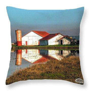 Reflection Barn  Throw Pillow