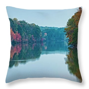 Throw Pillow featuring the photograph Reflection IIi by David Waldrop