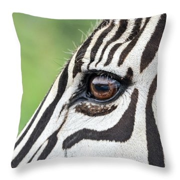 Reflection In A Zebra Eye Throw Pillow