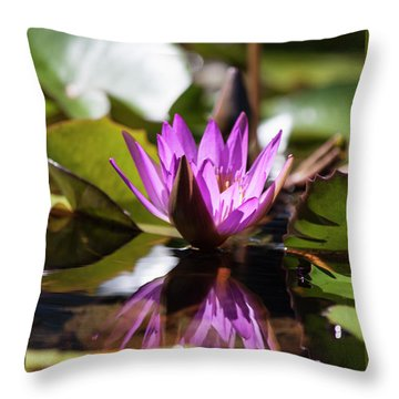 Throw Pillow featuring the photograph Reflection In Fuchsia by Suzanne Gaff