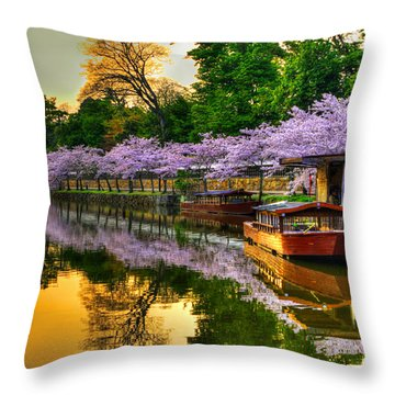 Reflection In Gold Throw Pillow