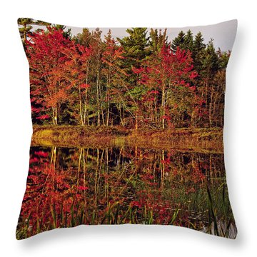 Throw Pillow featuring the photograph Reflection Island by Kathleen Sartoris