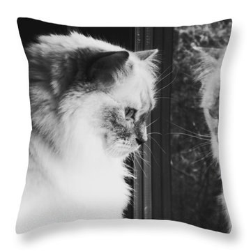 Reflection Throw Pillow by Karen Stahlros