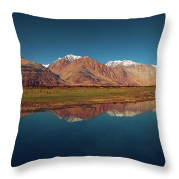 Reflection Throw Pillow by Marji Lang