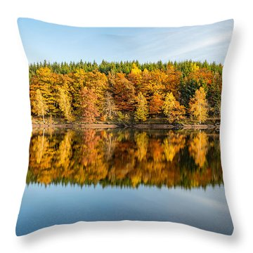 Reflection Of Autumn Throw Pillow