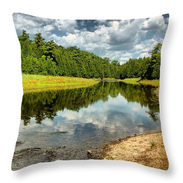 Reflection Of Nature Throw Pillow
