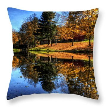 Reflection Of Northeast Ohio Fall Throw Pillow