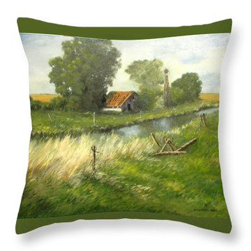 Reflection Of The Past  Throw Pillow