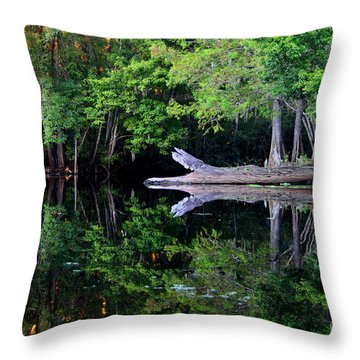Reflection Off The Withlacoochee River Throw Pillow by Barbara Bowen