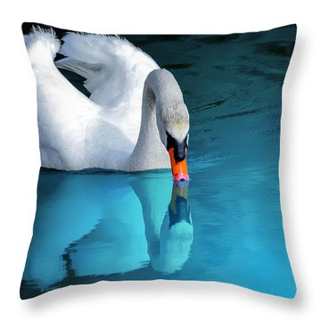 Reflection Perfection Throw Pillow
