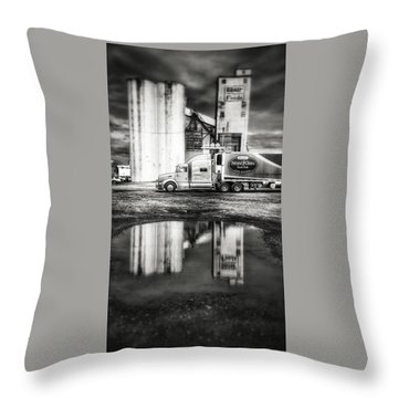 Reflection Puddle Throw Pillow by Dustin Soph