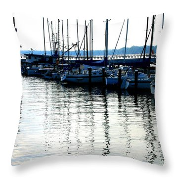 Reflections -  Image  2 Throw Pillow