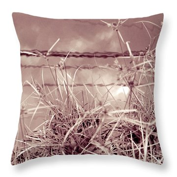 Throw Pillow featuring the photograph Reflections 1 by Mukta Gupta