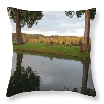 Reflections #183 Throw Pillow by Barbara Tristan