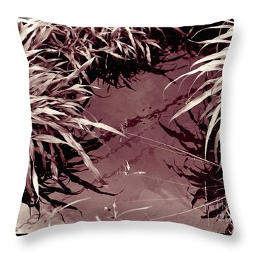 Throw Pillow featuring the photograph Reflections 2 by Mukta Gupta
