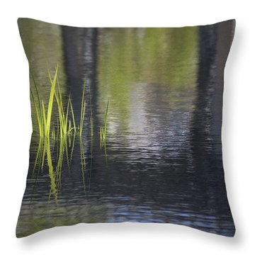 Reflections Accents Throw Pillow