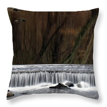 Reflections And Water Fall Throw Pillow