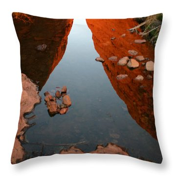 Throw Pillow featuring the photograph Reflections At Kata Tjuta In The Northern Territory by Keiran Lusk