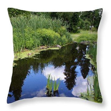Throw Pillow featuring the photograph Reflections by Ben Upham III