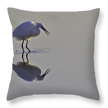 Reflections Throw Pillow by Brian Wright