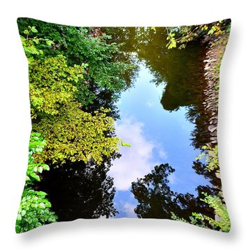 Throw Pillow featuring the photograph Paradigm Shift by EDi by Darlene
