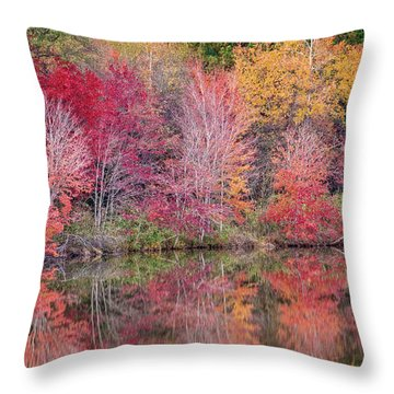 Throw Pillow featuring the photograph Reflections by David Waldrop