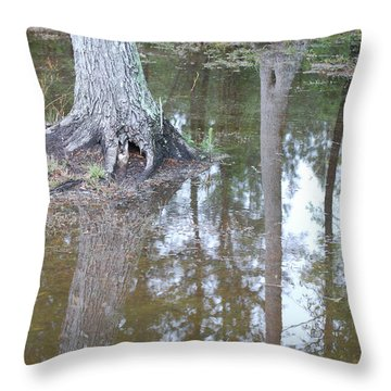 Reflections Throw Pillow by Gordon Mooneyhan