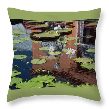 Reflections II Throw Pillow by Suzanne Gaff