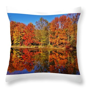 Reflections In Autumn Throw Pillow