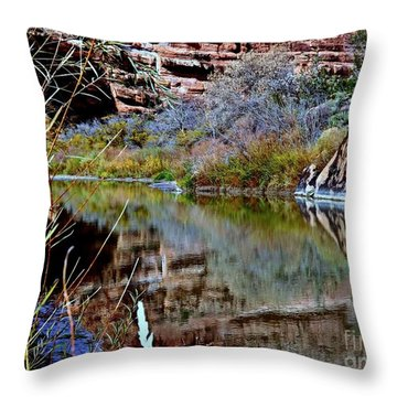 Reflections In Desert River Canyon Throw Pillow by Annie Gibbons