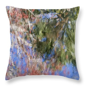 Reflections In The Hillsborough River Throw Pillow by John Arnaldi
