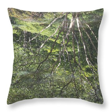 Reflections In The Japanese Gardens Throw Pillow