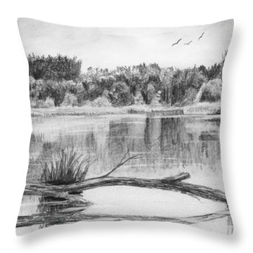 Reflections In The Water Throw Pillow by Nolan Clark