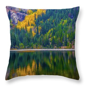 Reflections Throw Pillow by Jon Burch Photography
