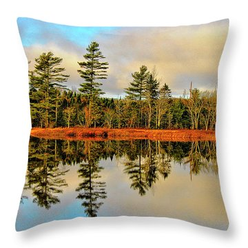 Reflections - Lake Landscape Throw Pillow