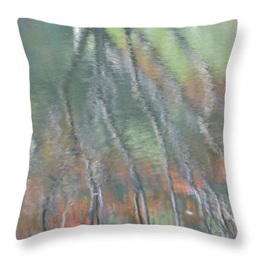 Reflections Throw Pillow by Linda Geiger