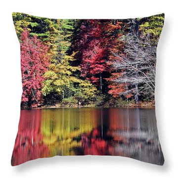 Reflections Of A Bare Tree Throw Pillow