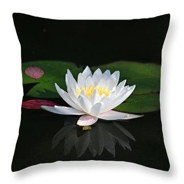 Reflections Of A Water Lily Throw Pillow